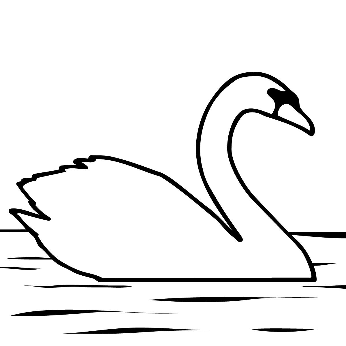 Swan Babies Clipart