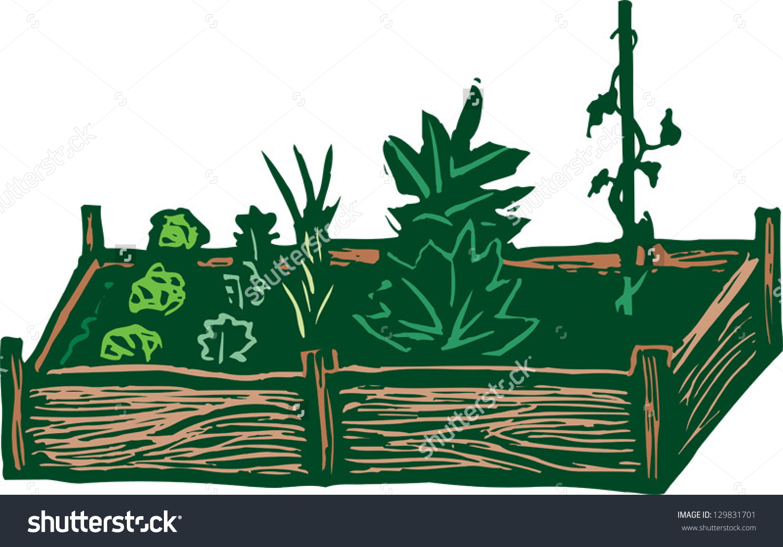 Raised Garden Rows