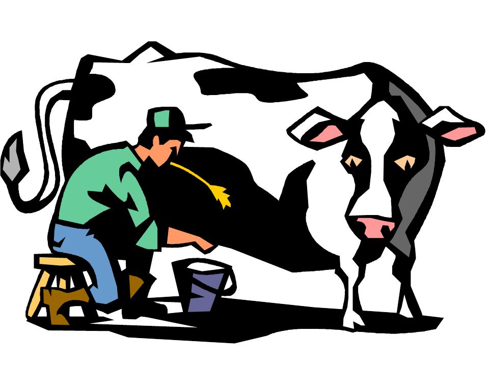 Gallon Clip Milk Art