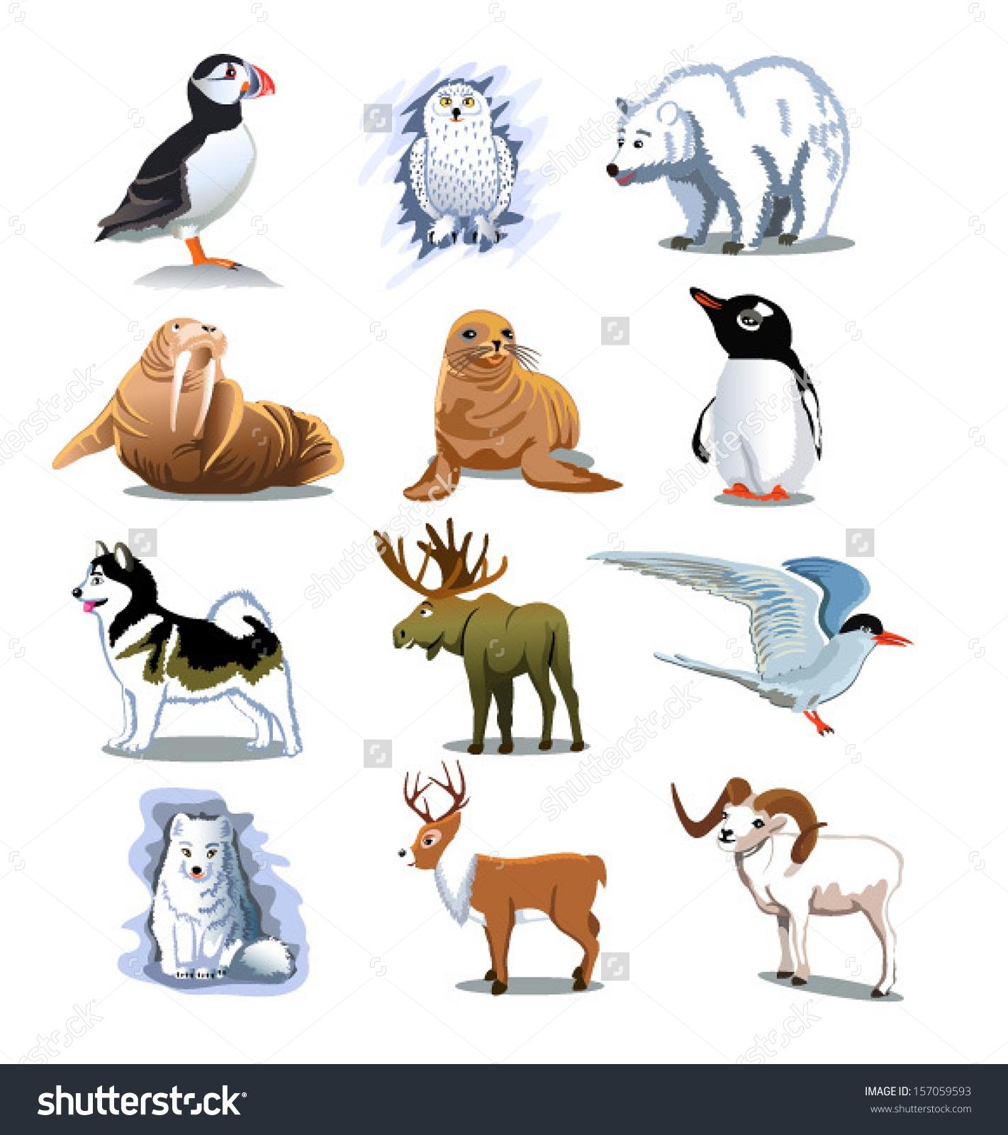 Polar Animals Clipart