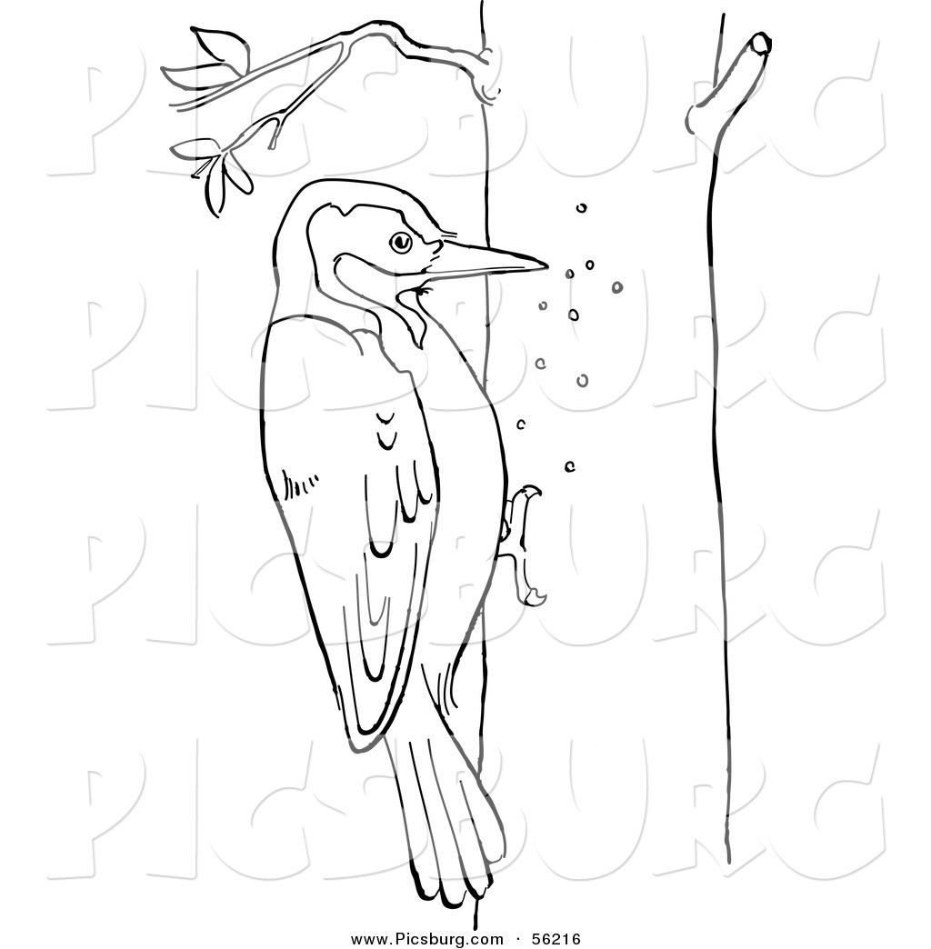 Red Black Woodpecker Clipart 20 Free Cliparts