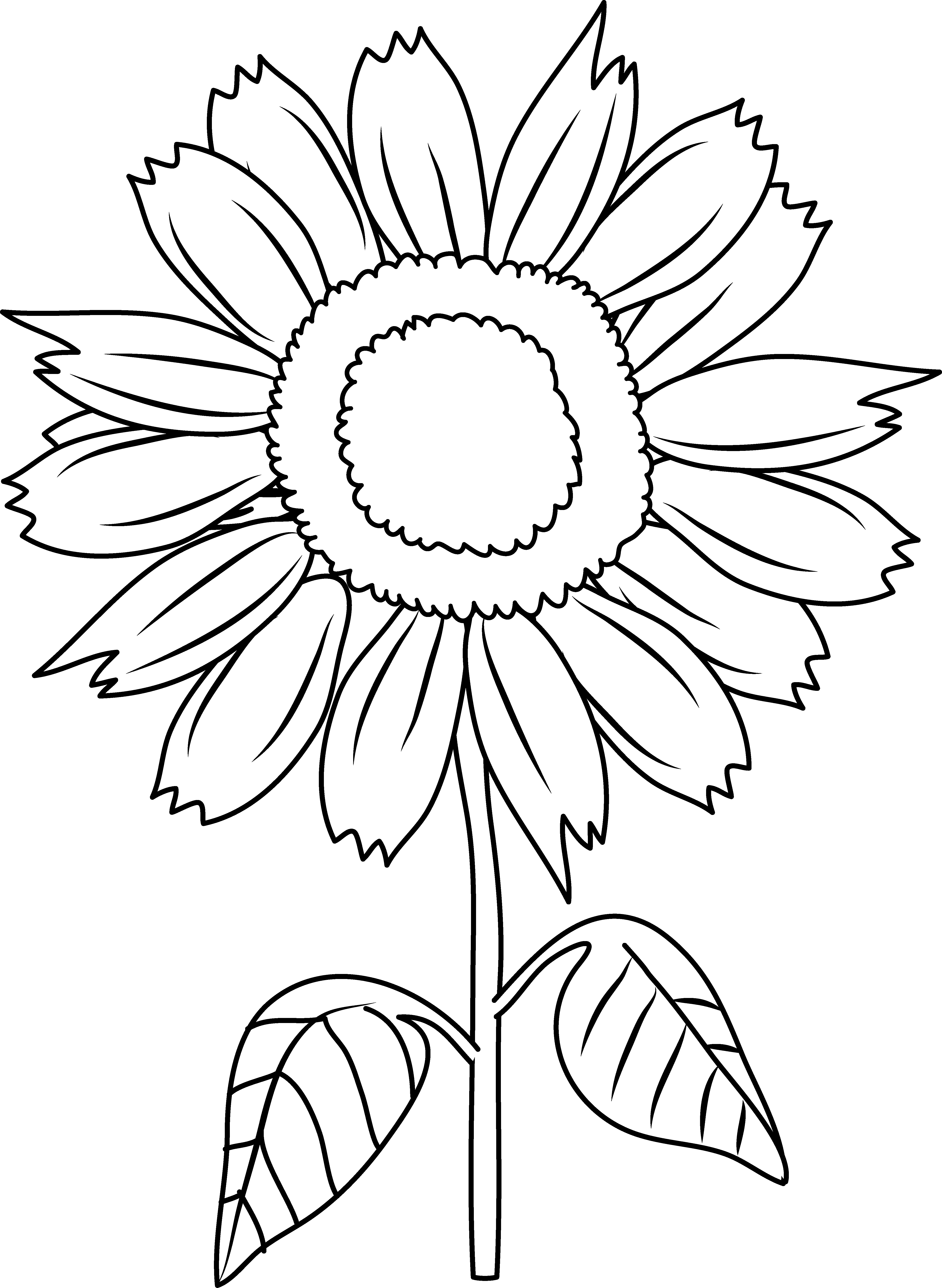 Sunflowers Clipart To Color
