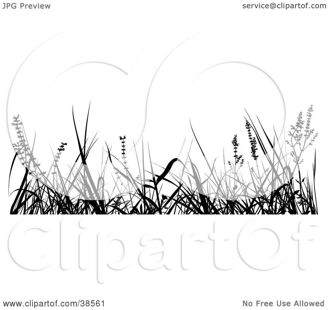 Tall Grass Clipart Silhouette 20 Free Cliparts