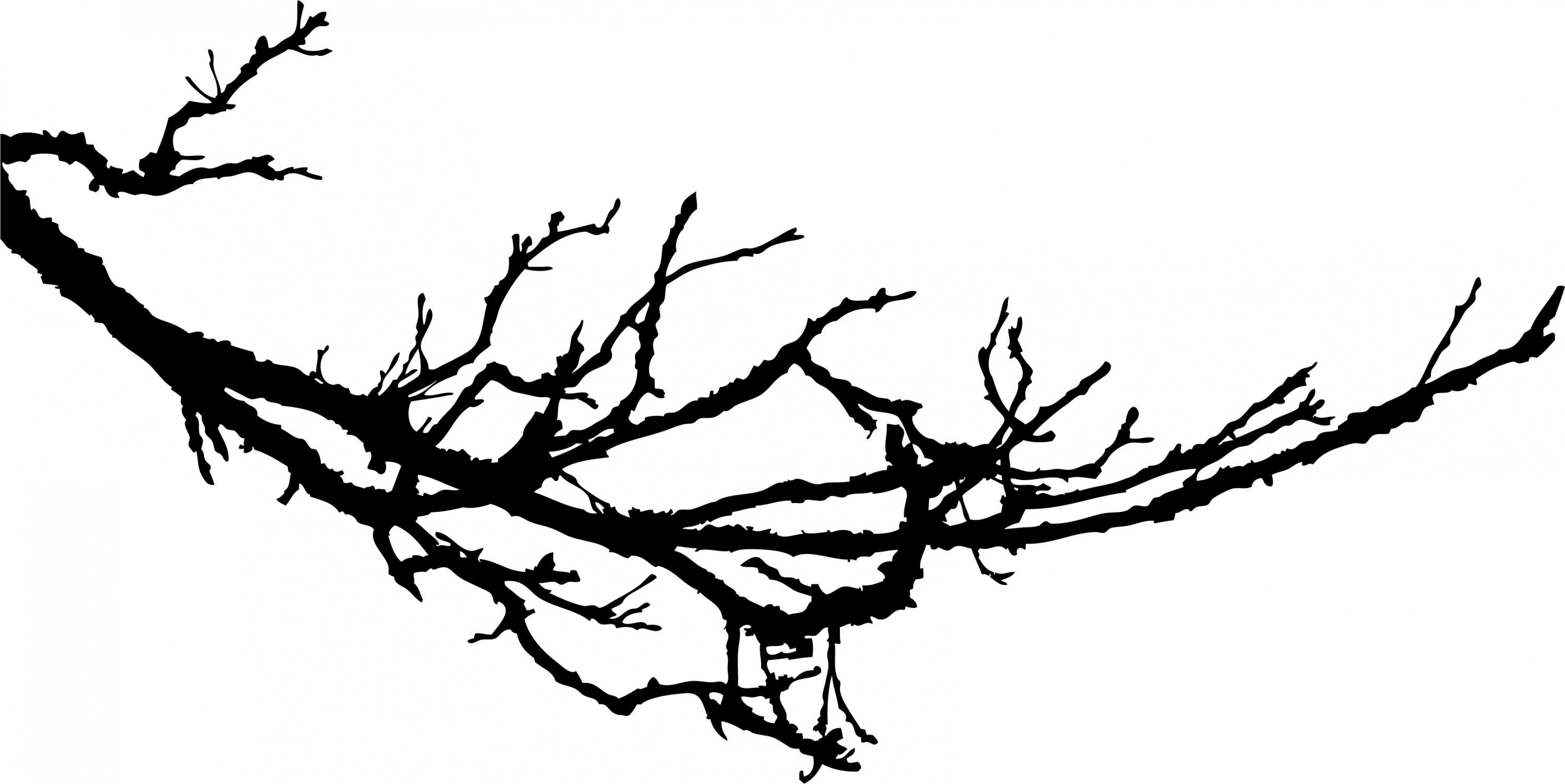 Tree Branches Clipart Silhouette 20 Free Cliparts