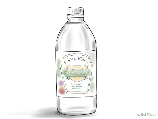 Vinegar Clipart 20 Free Cliparts Download Images On