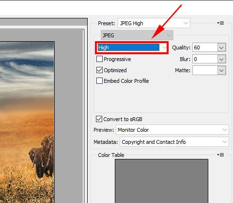 File Format in Photoshop