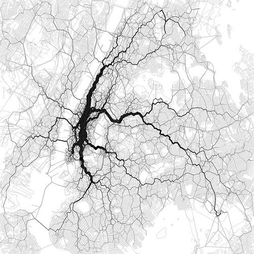 neuronal twitter