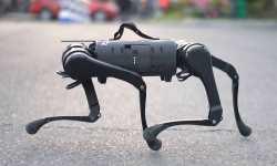Unitree-A1-Robot-Dog-