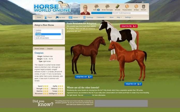 horse world online2