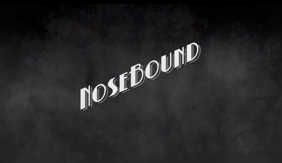 NoseBound is an episodic adventure game. A detective story in the vein of film noir and paranormal mysteries and it's on IndieGogo