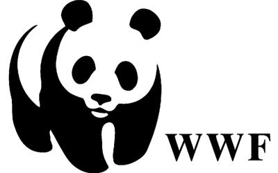 Pewdiepie WWF