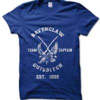 Ravenclaw Quidditch Harry Potter t-shirt by Clique Wear
