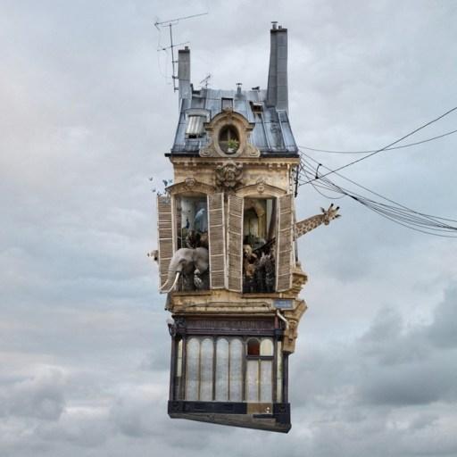 Flying_Houseschehere_Nature_Morte