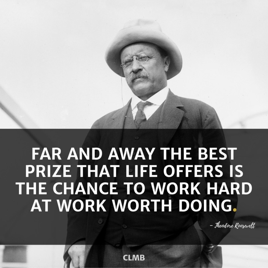 Far and away the best prize that life offers is the chance to work hard at work worth doing.