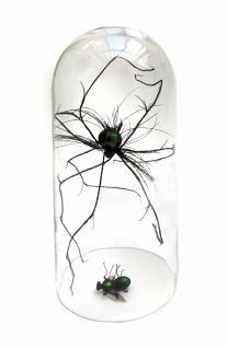 Spider Fly sculpture