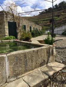 Quinta do Noval Douro Port