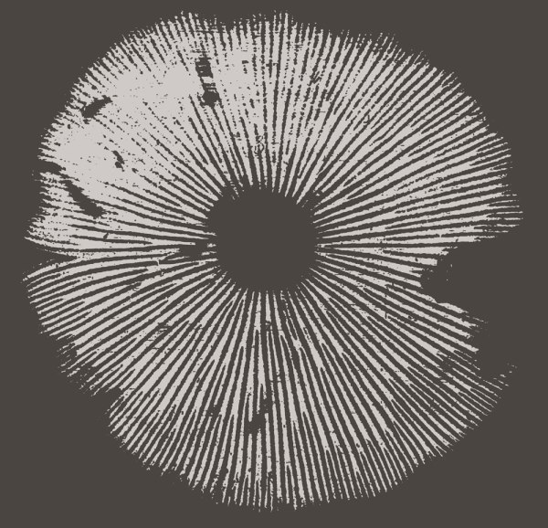 Spore print shirt design by Closet of Mysteries