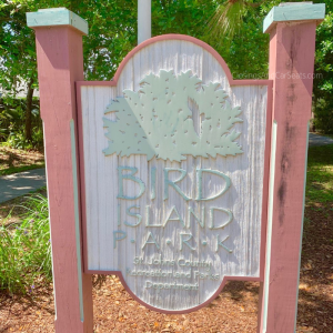 Bird Island Park Ponte Vedra Beach Library