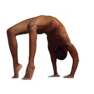 urdhva danurasana (upward facing bow or wheel pose)