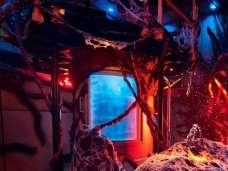 290524-no-halloween-horror-nights-2018-fas-de-650x488-1 Stranger Things | Universal divulga imagens de atração baseada na série; Confira!