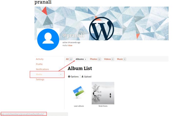 default-tab-for-profile-media