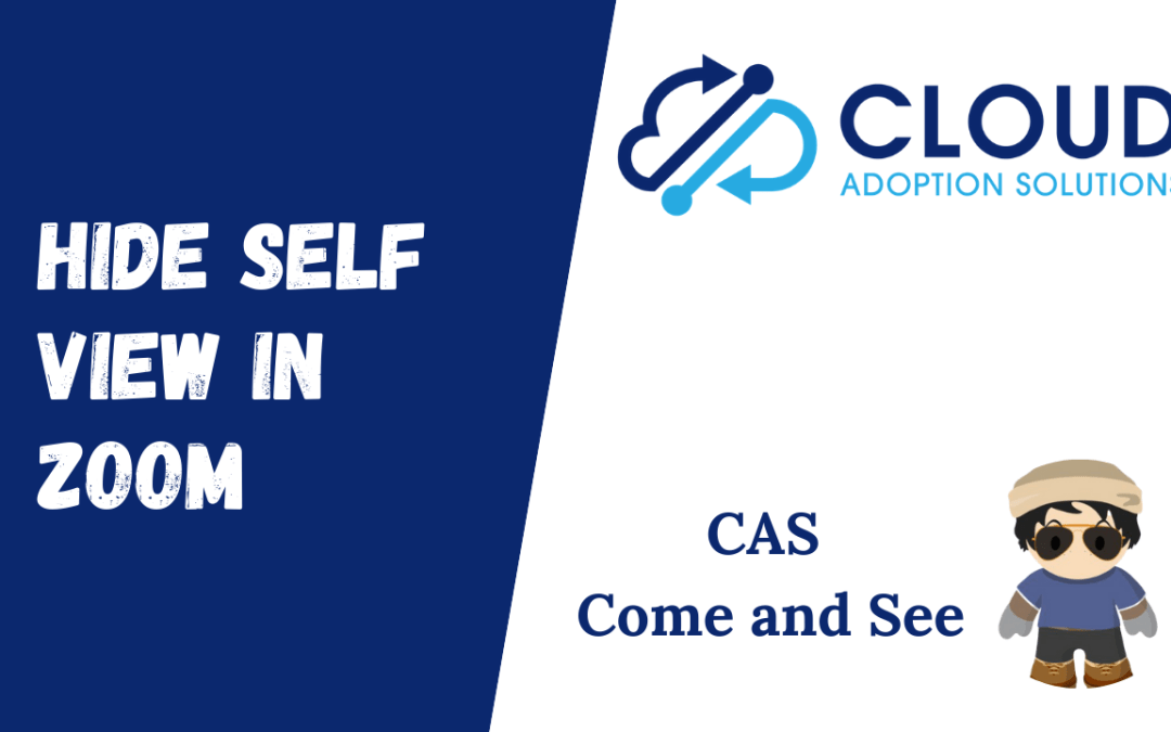 Hide Self View in Zoom: CAS Come and See Video
