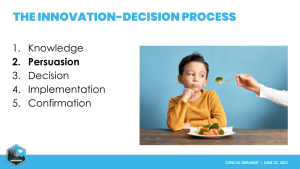 The Innovation-Decision Process