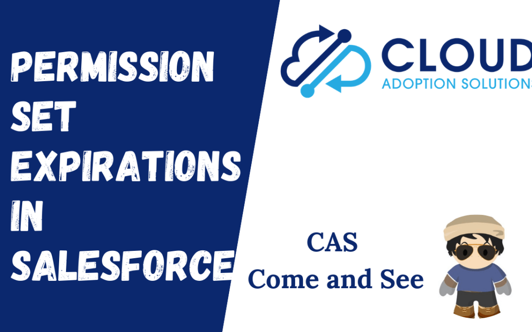 Permission Set Group Expiration: CAS Come and See Video