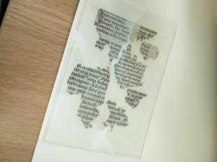 Fragments of print under the Adam and Eve print.