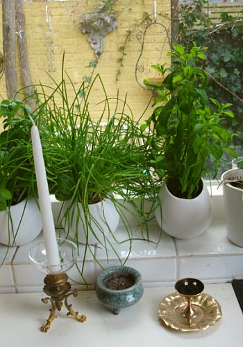 incense2_small_burners.jpg