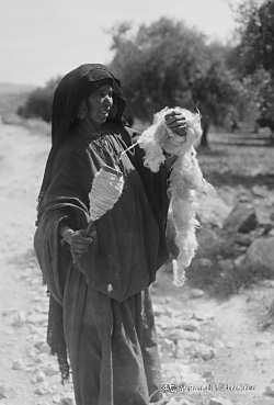 bedouinwoman_spinning_wool