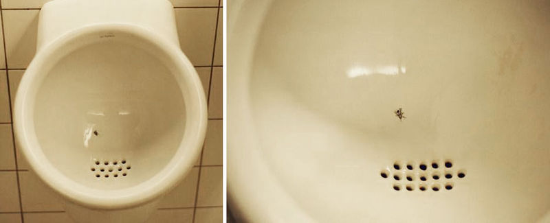urinary hygiene
