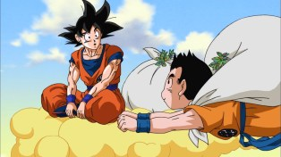 Goku has a very thick head.