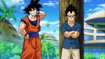 dragon-ball-super-78-06
