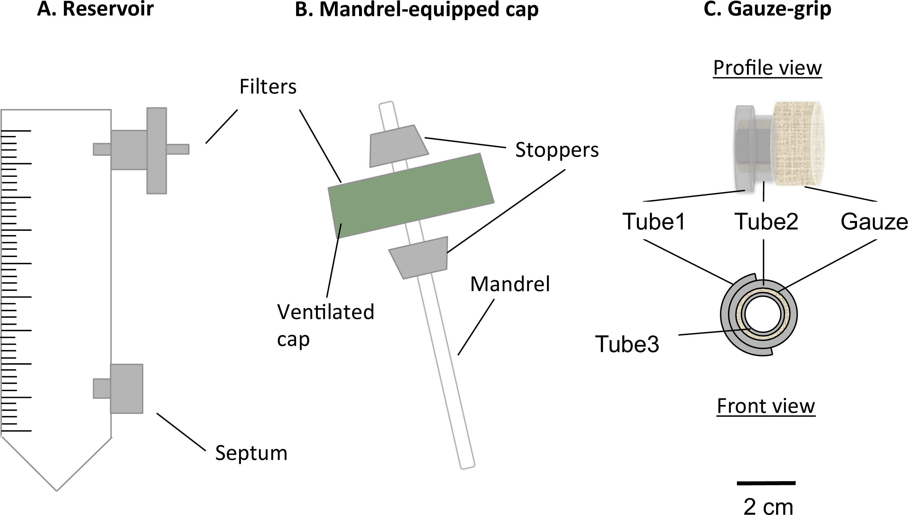 Engineering 3d Cellularized Collagen Gels For Vascular