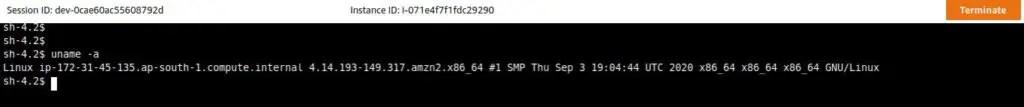 validate-login-ec2-instance