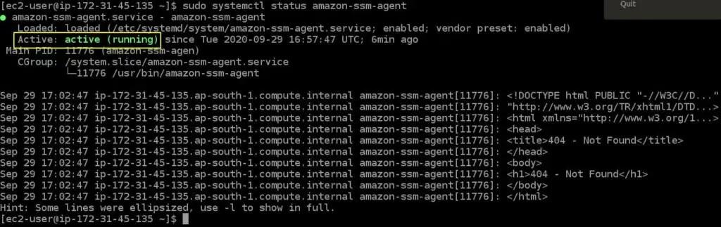 ssm-agent-status-to-connect-ec2-instance