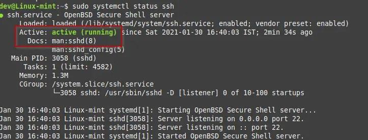 check service status linux mint