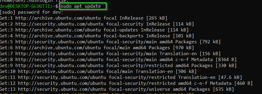 Update Ubuntu using sudo apt update command
