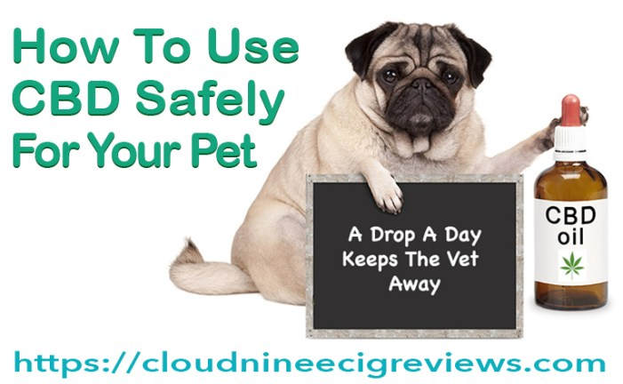 How to Use CBD Safely for Your Pet - title image
