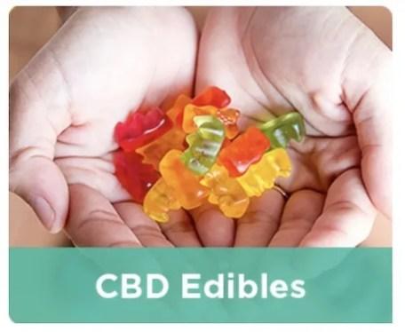 CBD Edibles from DirectCBD