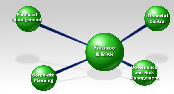 Corporate Financial Management Software