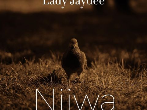 AUDIO: Lady Jaydee – NJIWA Mp3 DOWNLOAD