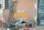 VIDEO: Aslay - MCHEPUKO Mp4 DOWNLOAD