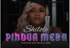 AUDIO: Shilole – PINDUA MEZA Mp3 DOWNLOAD