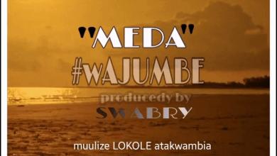 Photo of AUDIO: Meda – Wajumbe Mp3 Download