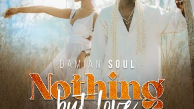 Photo of Damian Soul – Nothing But Love Mp3 Download