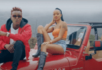 Willy Paul ft Avril – COCO Mp4 Download