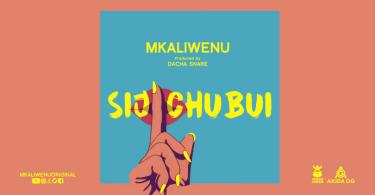 Diamond Platnumz Ft Mkaliwenu -Sijichubui (Haunisumbui Remix) Mp3 Download AUDIO