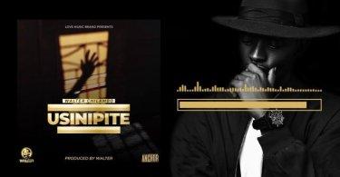 AUDIO: Walter Chilambo – Usinipite Mp3 Download
